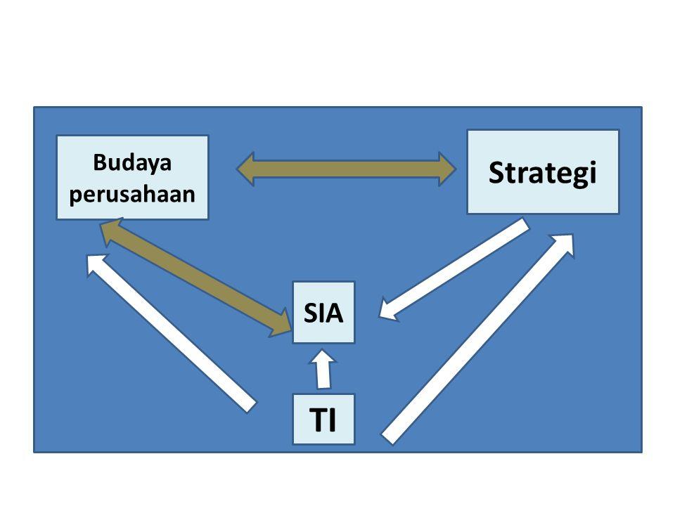 Strategi Budaya perusahaan SIA TI