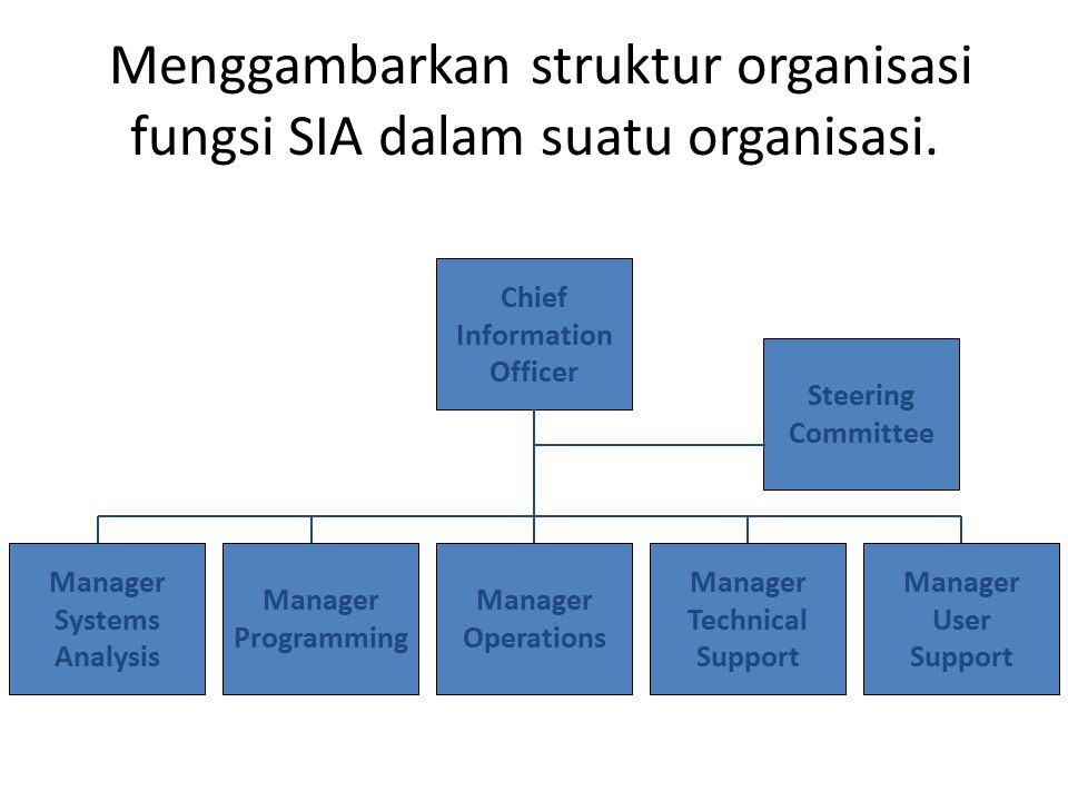Menggambarkan struktur organisasi fungsi SIA dalam suatu organisasi.