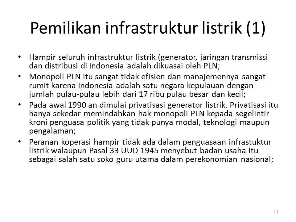 Pemilikan infrastruktur listrik (1)