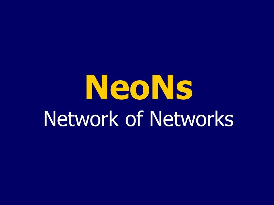 NeoNs Network of Networks