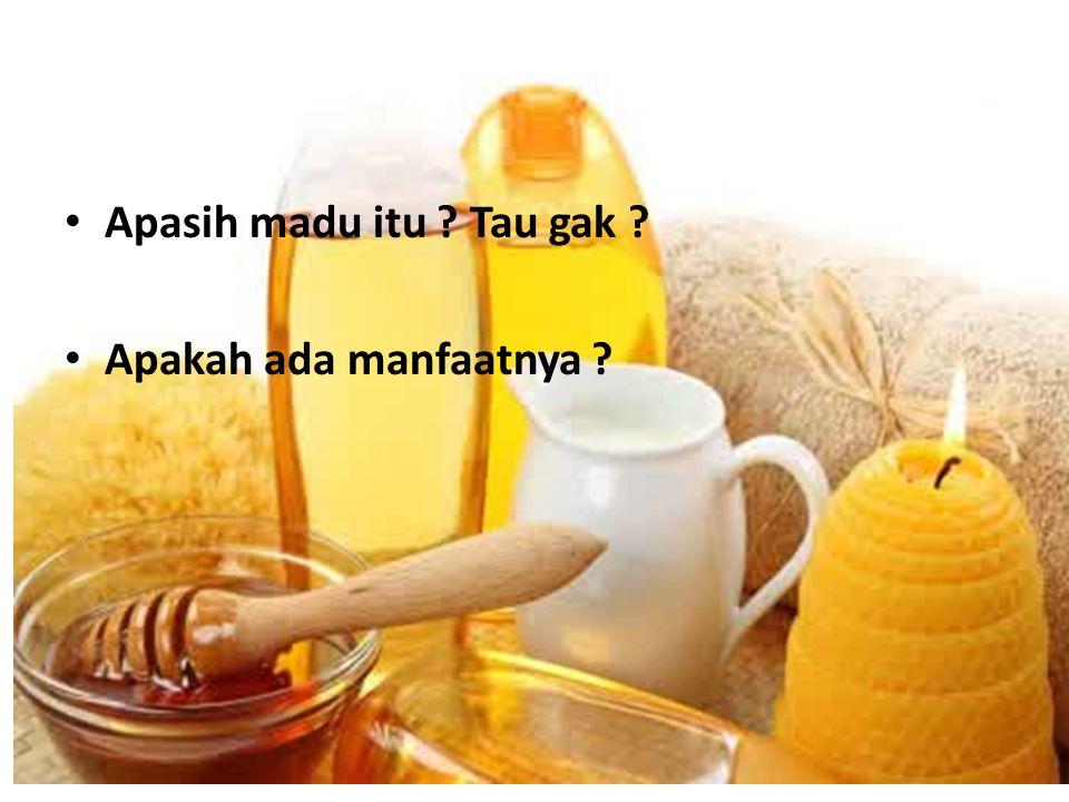 Apasih madu itu Tau gak Apakah ada manfaatnya