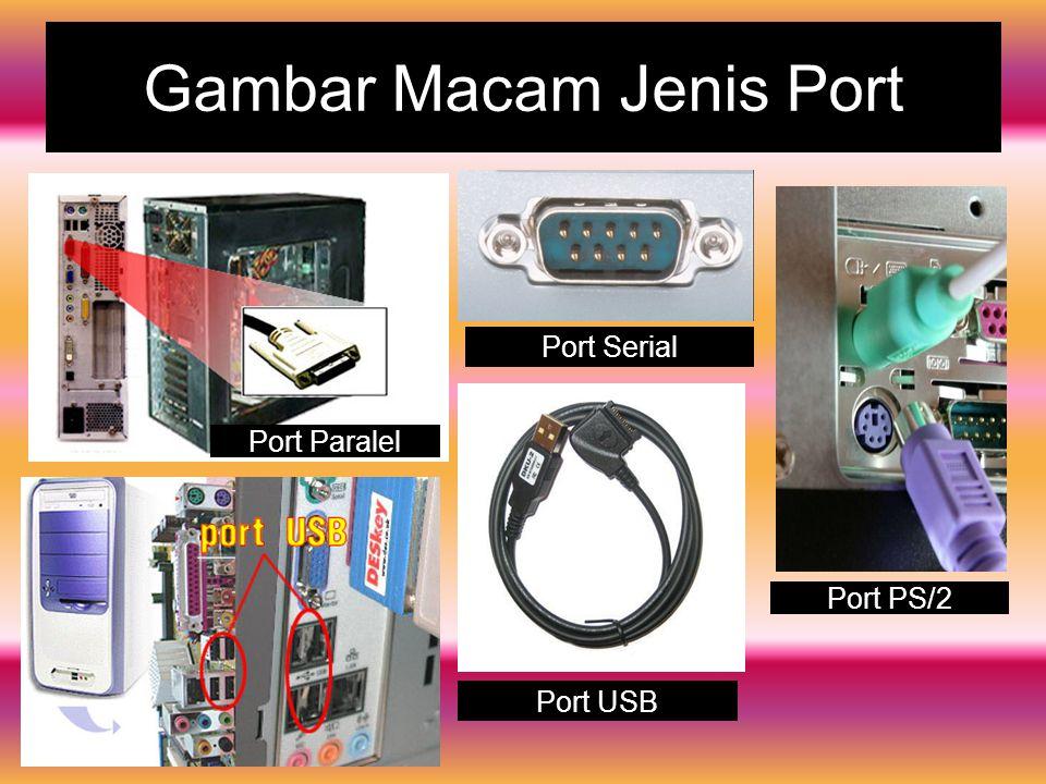 Gambar Macam Jenis Port
