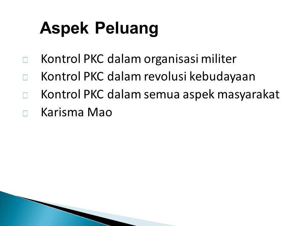 Aspek Peluang Kontrol PKC dalam organisasi militer