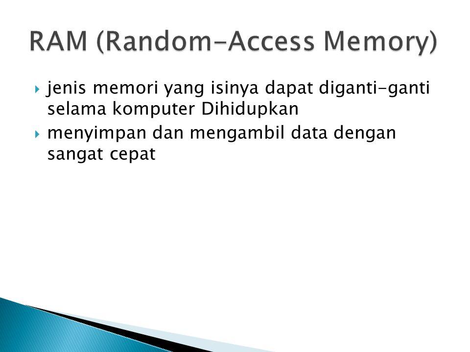 RAM (Random-Access Memory)