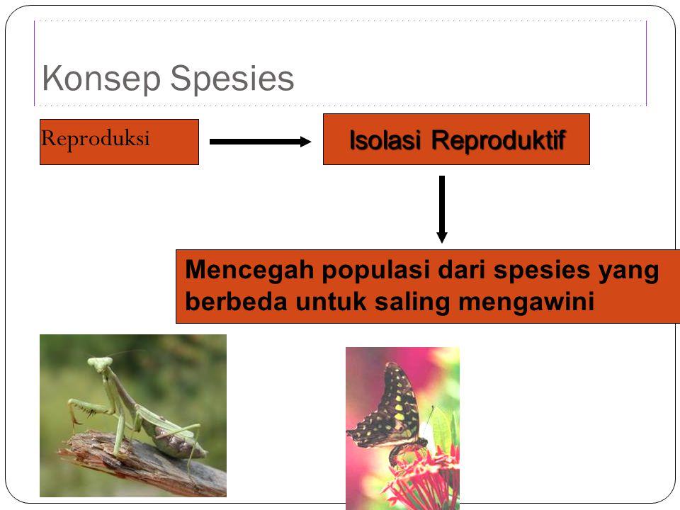 Konsep Spesies Isolasi Reproduktif Reproduksi