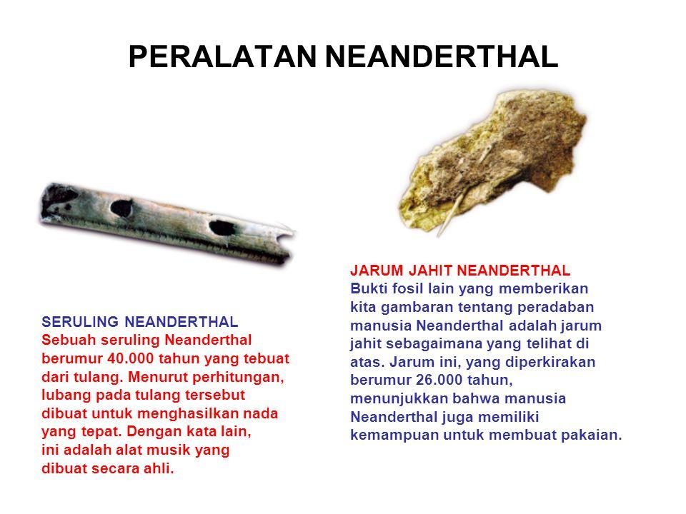 PERALATAN NEANDERTHAL