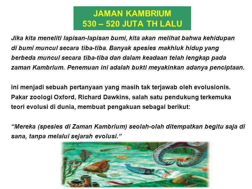JAMAN KAMBRIUM 530 – 520 JUTA TH LALU