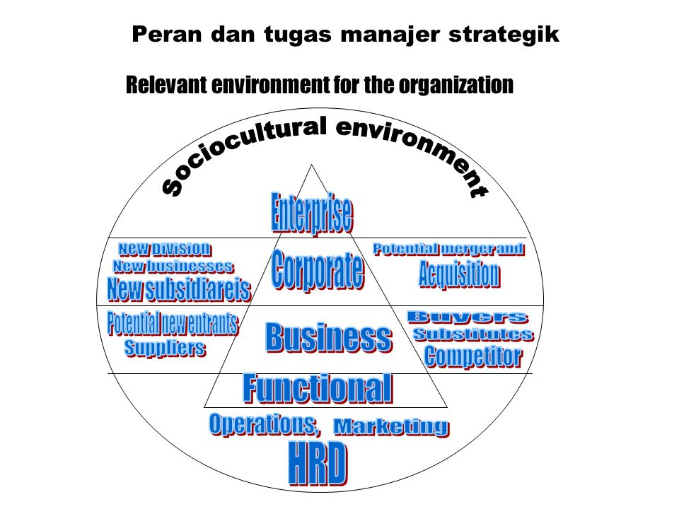 Peran dan tugas manajer strategik