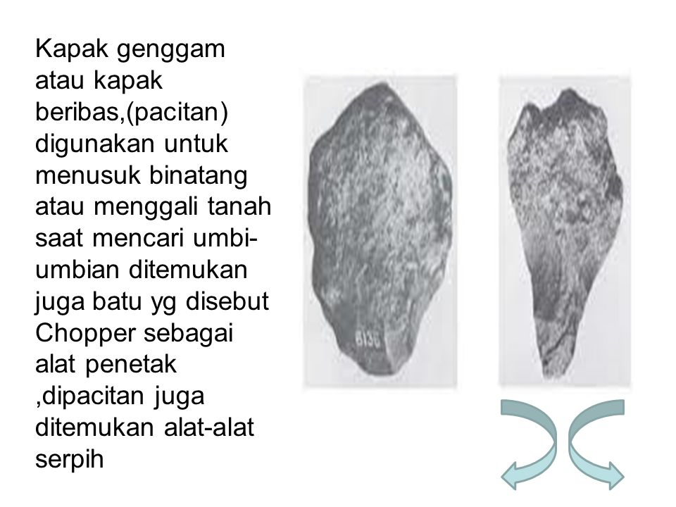 Kapak genggam atau kapak beribas,(pacitan) digunakan untuk menusuk binatang atau menggali tanah saat mencari umbi-umbian ditemukan juga batu yg disebut Chopper sebagai alat penetak ,dipacitan juga ditemukan alat-alat serpih