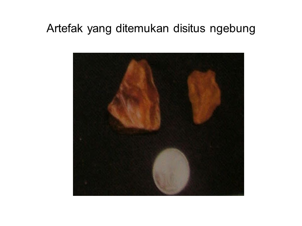 Artefak yang ditemukan disitus ngebung