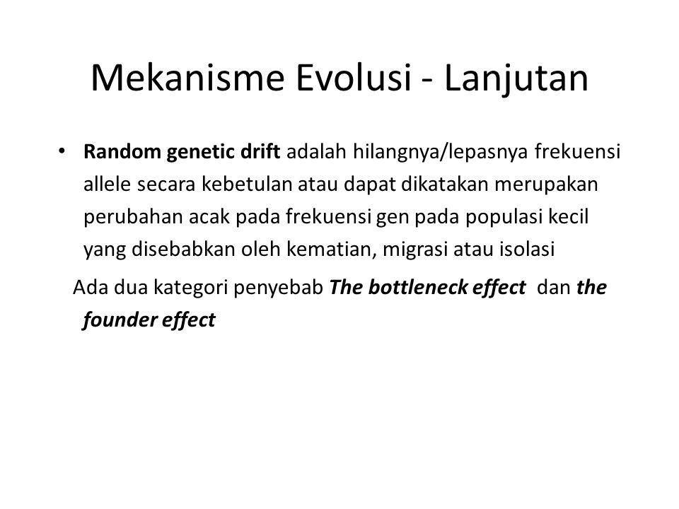 Mekanisme Evolusi - Lanjutan