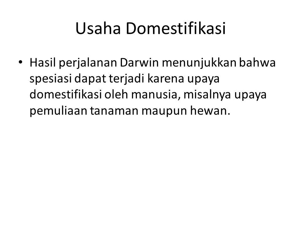 Usaha Domestifikasi