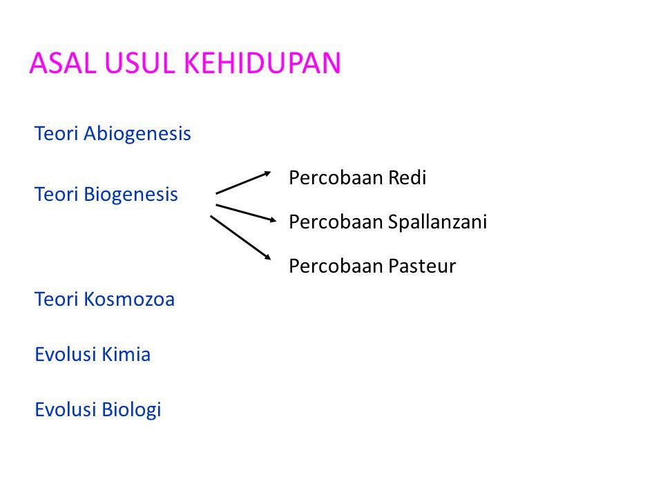 ASAL USUL KEHIDUPAN Teori Abiogenesis Percobaan Redi Teori Biogenesis
