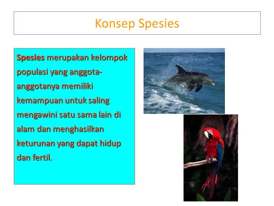 Konsep Spesies