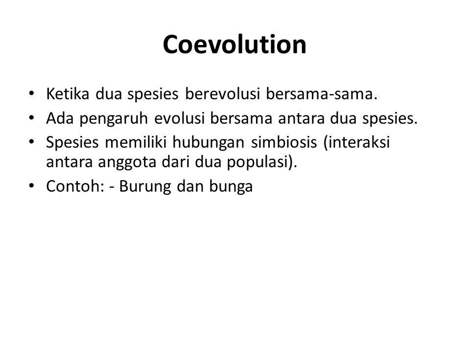 Coevolution Ketika dua spesies berevolusi bersama-sama.