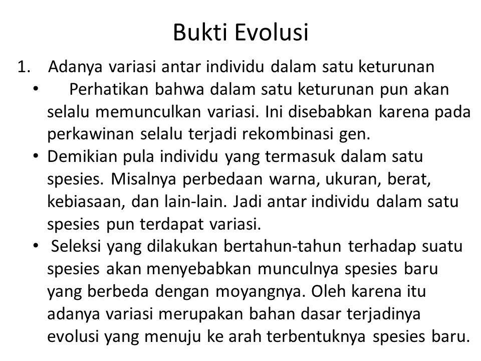 Bukti Evolusi 1. Adanya variasi antar individu dalam satu keturunan