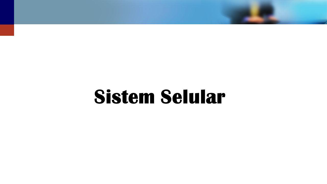 Sistem Selular