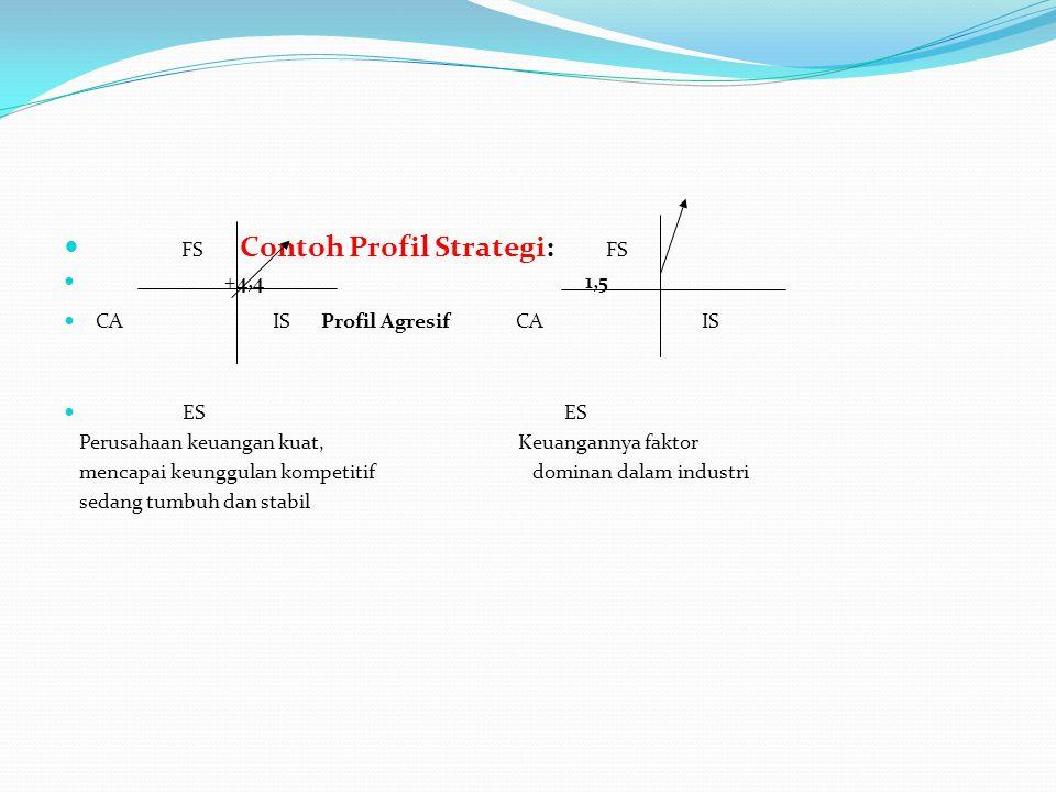 FS Contoh Profil Strategi: FS