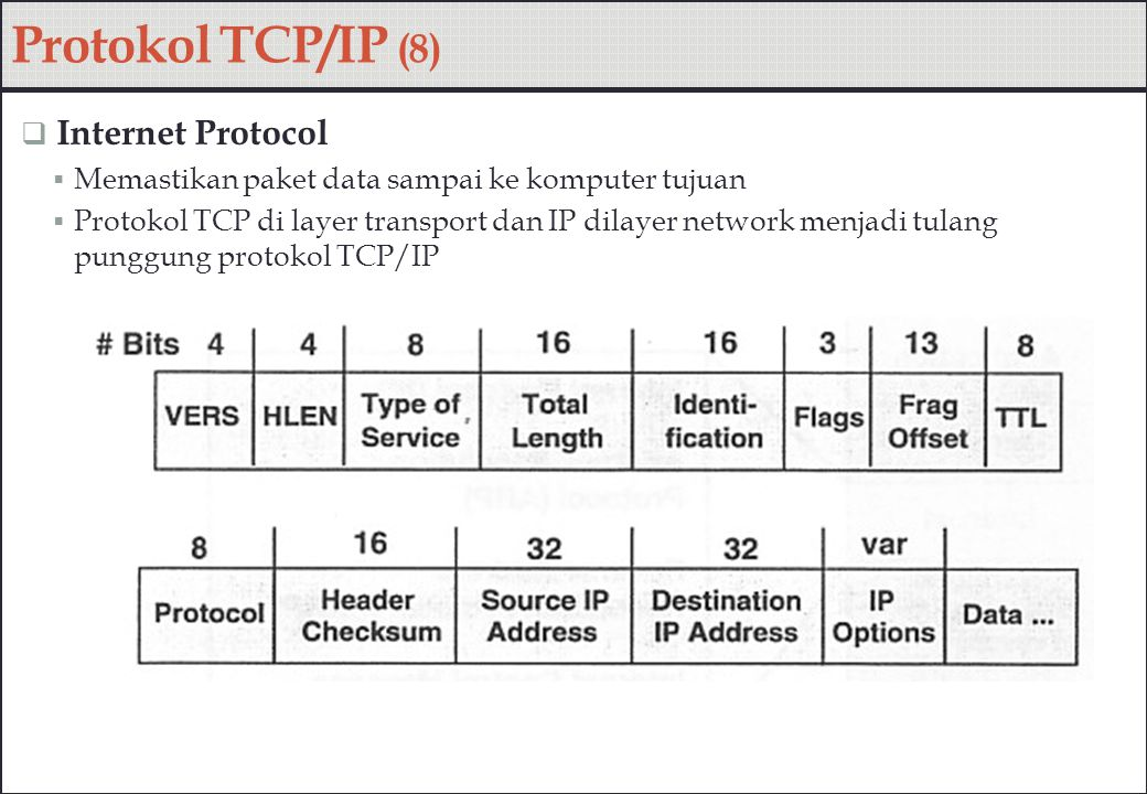 Protokol TCP/IP (8) Internet Protocol