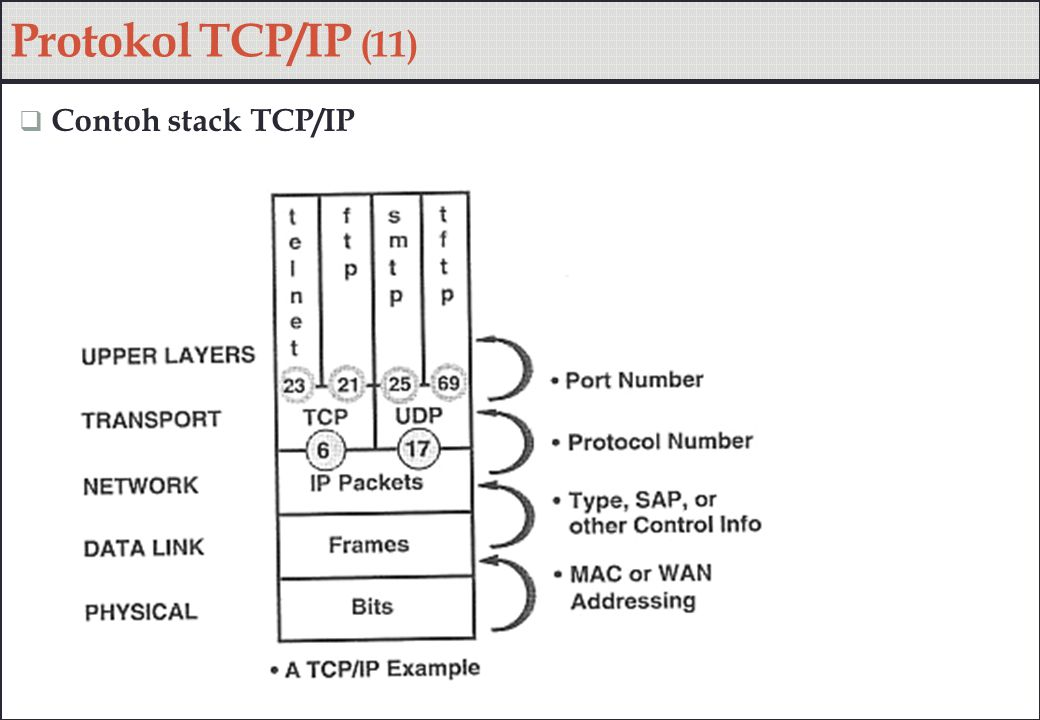 Protokol TCP/IP (11) Contoh stack TCP/IP