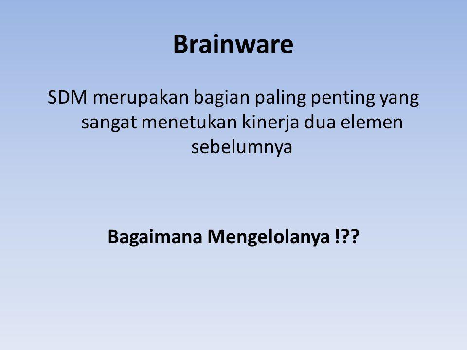 Brainware SDM merupakan bagian paling penting yang sangat menetukan kinerja dua elemen sebelumnya Bagaimana Mengelolanya ! .