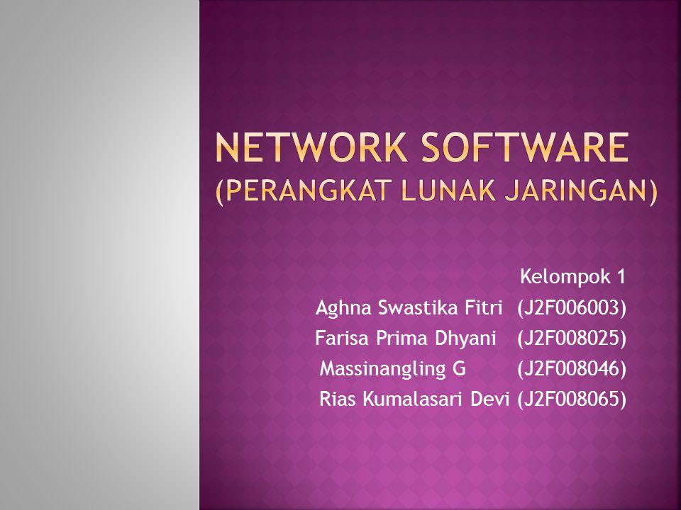 Network Software (Perangkat Lunak Jaringan)