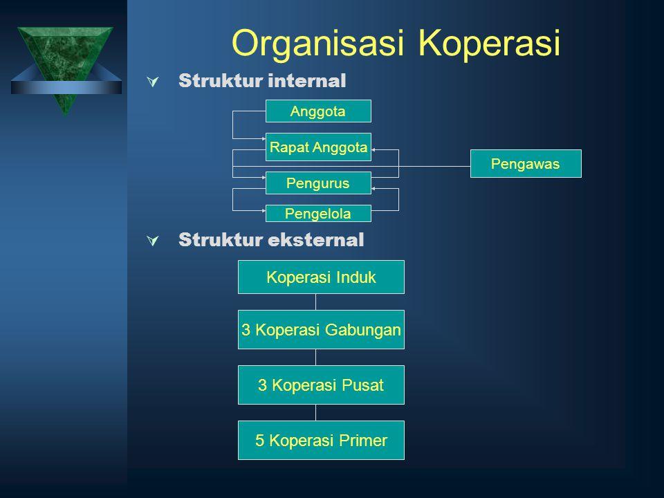 Organisasi Koperasi Struktur internal Struktur eksternal