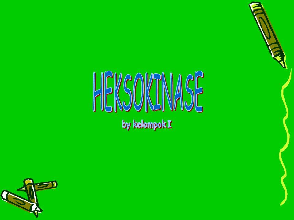 HEKSOKINASE by kelompok I