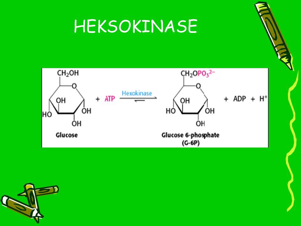 HEKSOKINASE