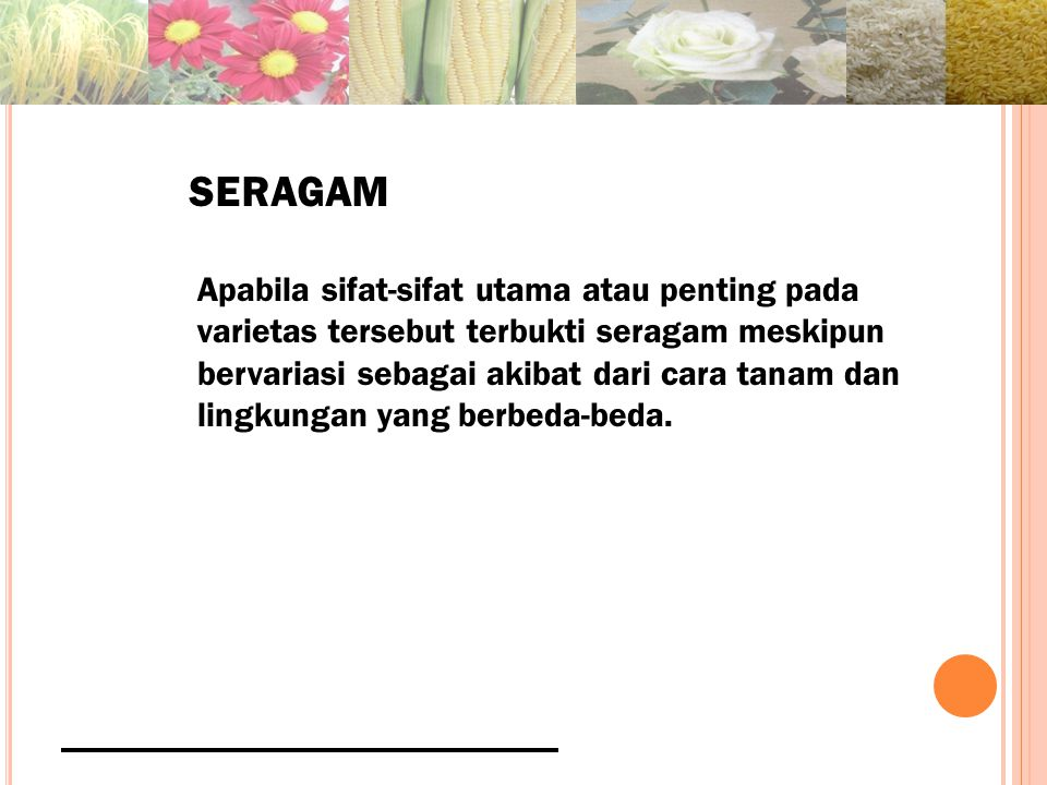 SERAGAM