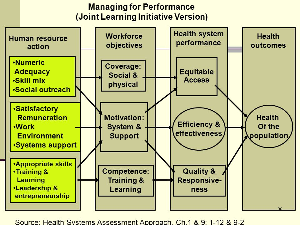 Managing for Performance (Joint Learning Initiative Version)