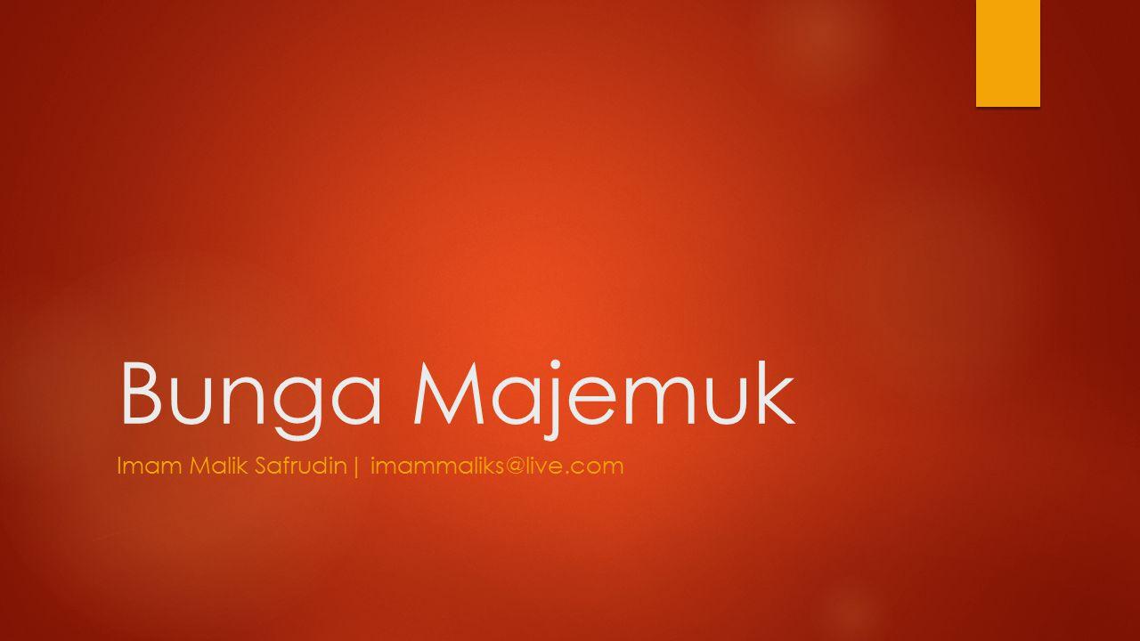 Imam Malik Safrudin| imammaliks@live.com