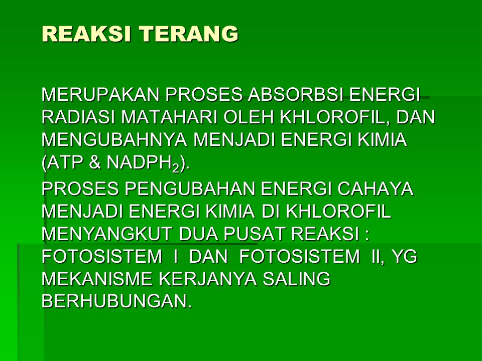 REAKSI TERANG MERUPAKAN PROSES ABSORBSI ENERGI RADIASI MATAHARI OLEH KHLOROFIL, DAN MENGUBAHNYA MENJADI ENERGI KIMIA (ATP & NADPH2).