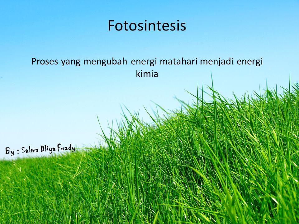 Fotosintesis Proses yang mengubah energi matahari menjadi energi kimia