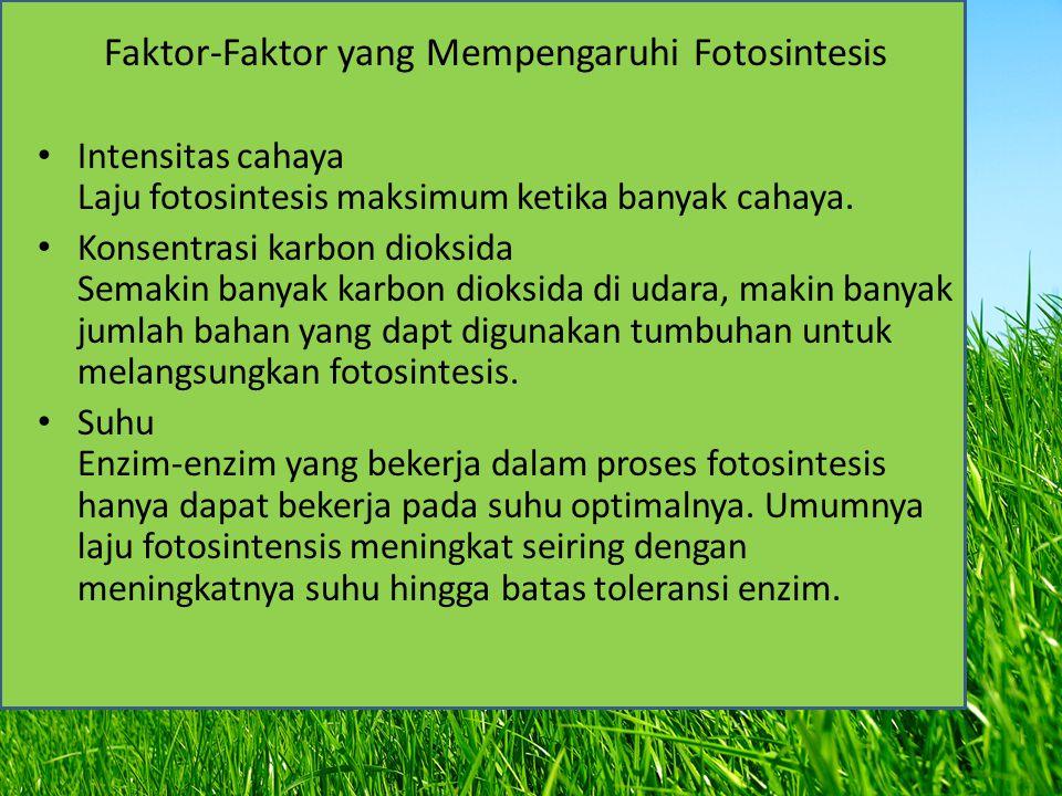 Faktor-Faktor yang Mempengaruhi Fotosintesis