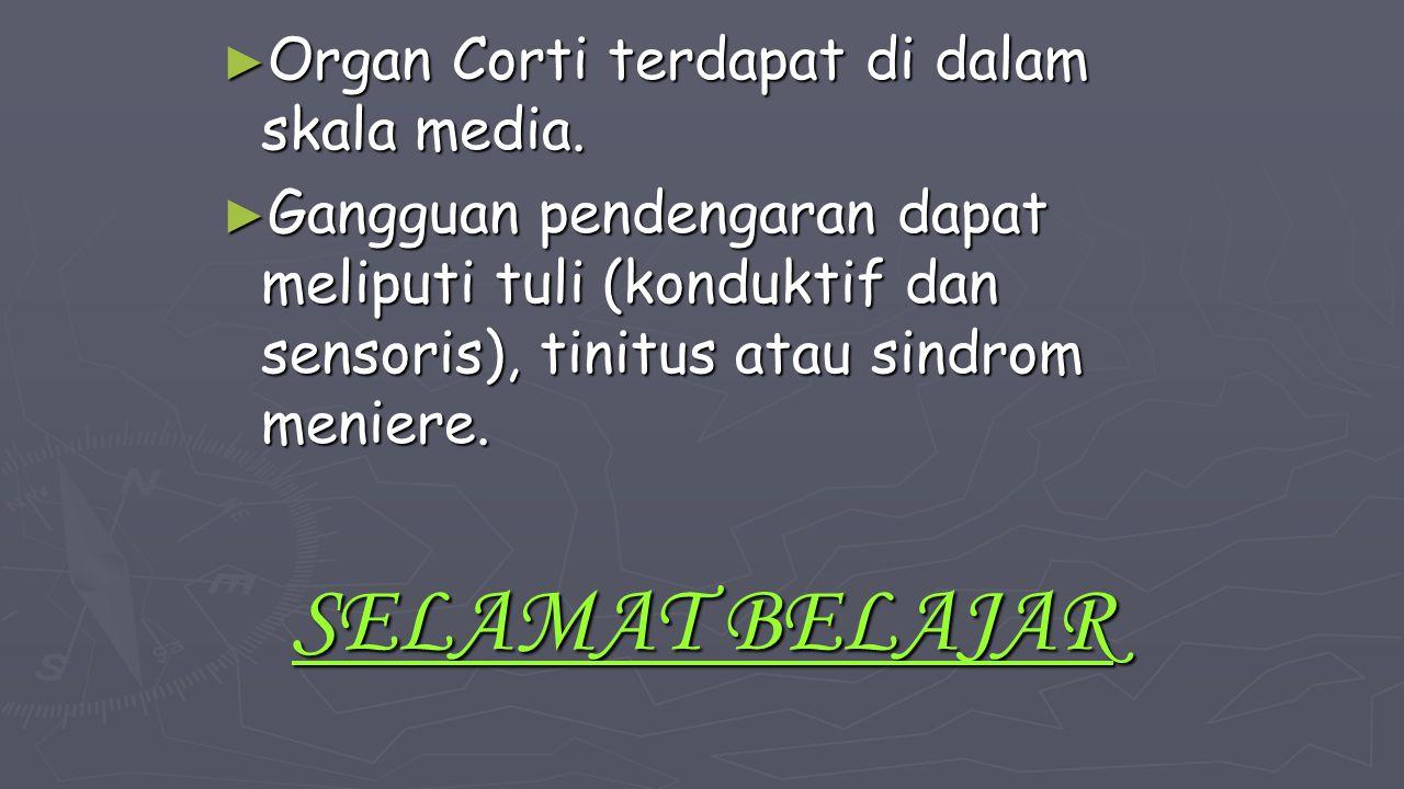 SELAMAT BELAJAR Organ Corti terdapat di dalam skala media.