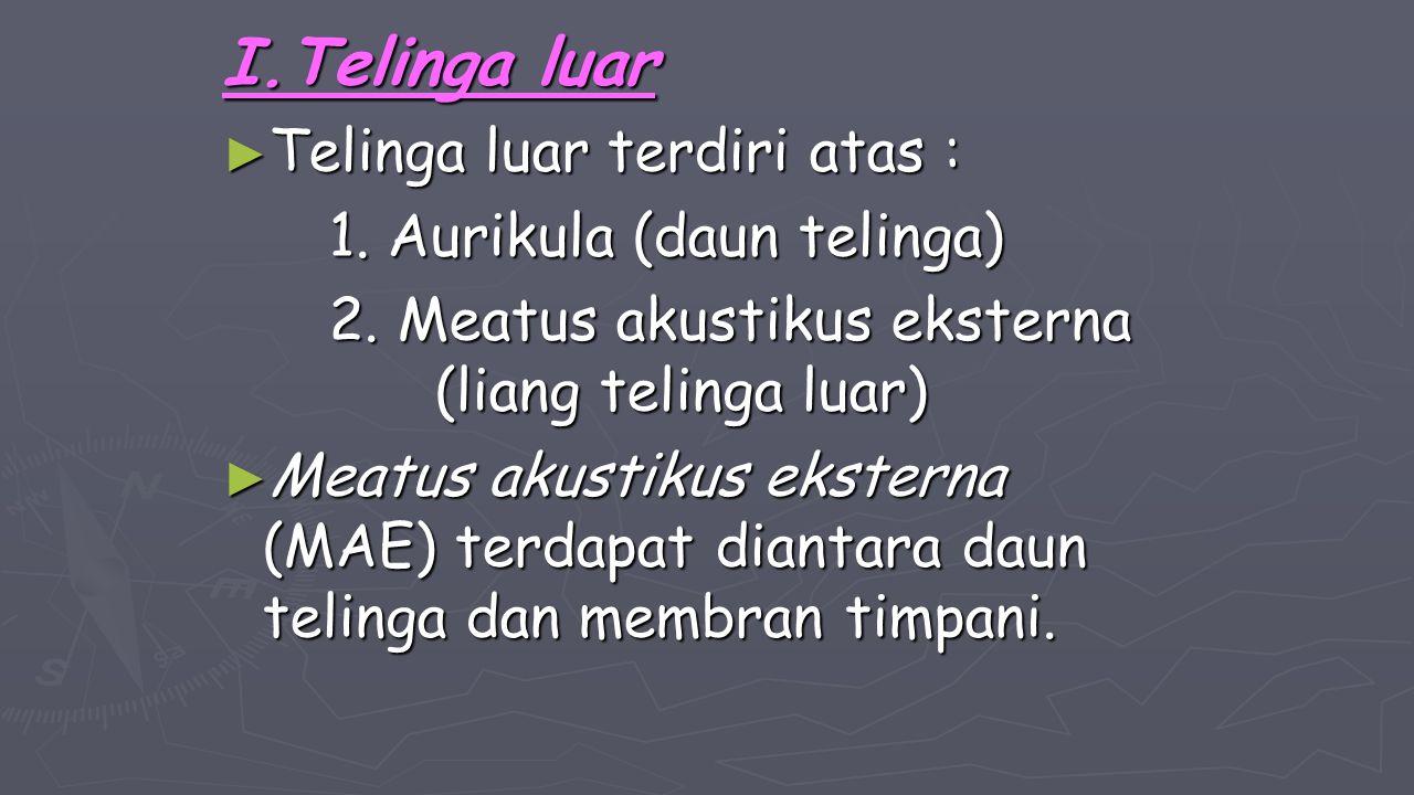 I.Telinga luar Telinga luar terdiri atas : 1. Aurikula (daun telinga)
