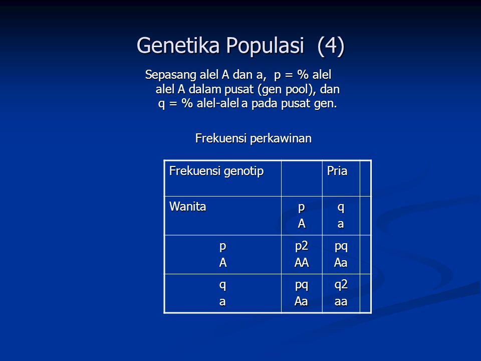 Genetika Populasi (4) Sepasang alel A dan a, p = % alel alel A dalam pusat (gen pool), dan q = % alel-alel a pada pusat gen.