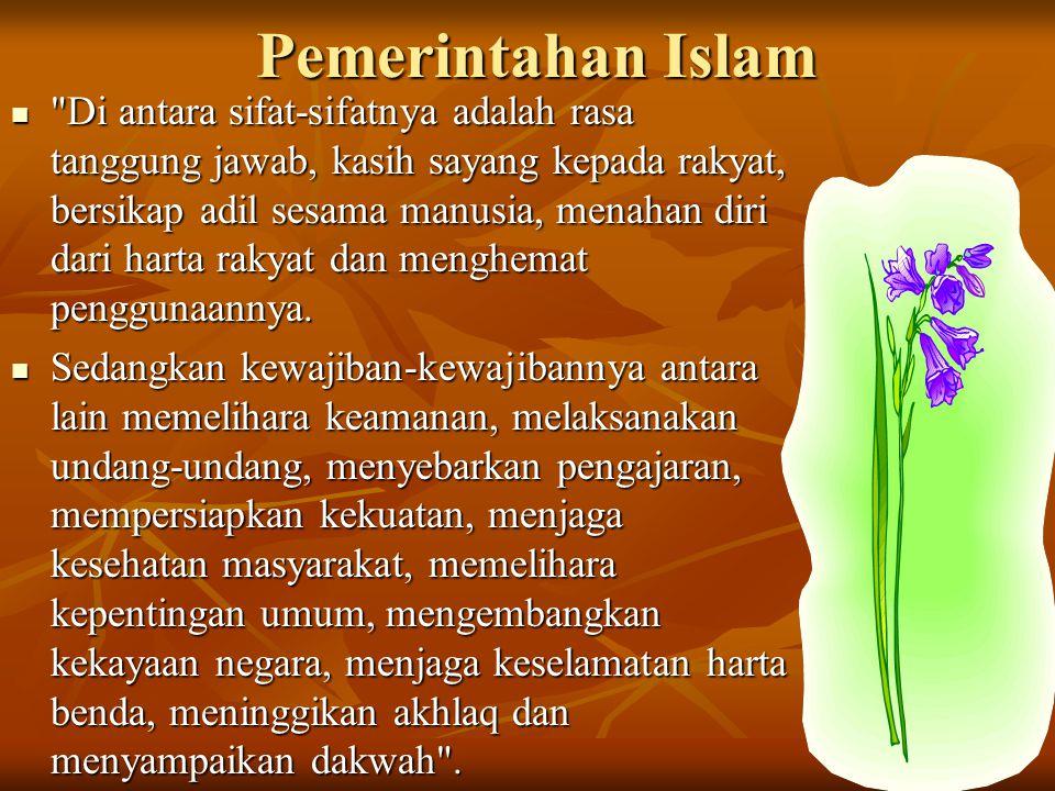 Pemerintahan Islam