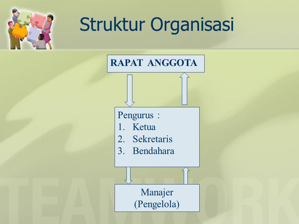 Struktur Organisasi RAPAT ANGGOTA Pengurus : Ketua Sekretaris