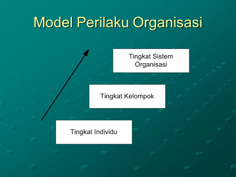 Model Perilaku Organisasi
