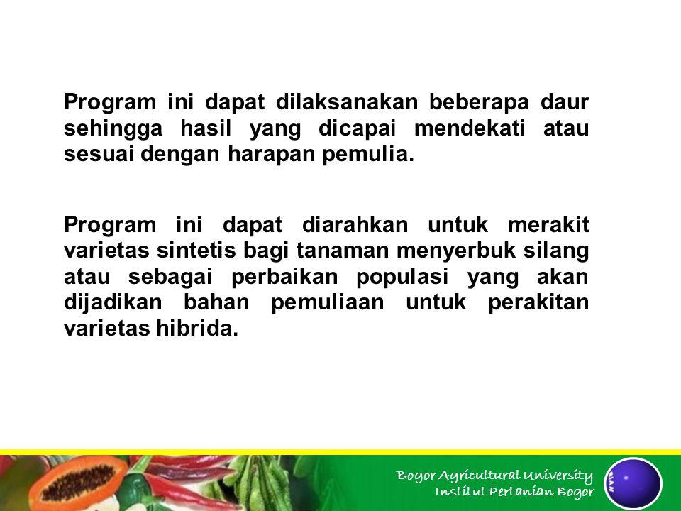 Program ini dapat dilaksanakan beberapa daur sehingga hasil yang dicapai mendekati atau sesuai dengan harapan pemulia.