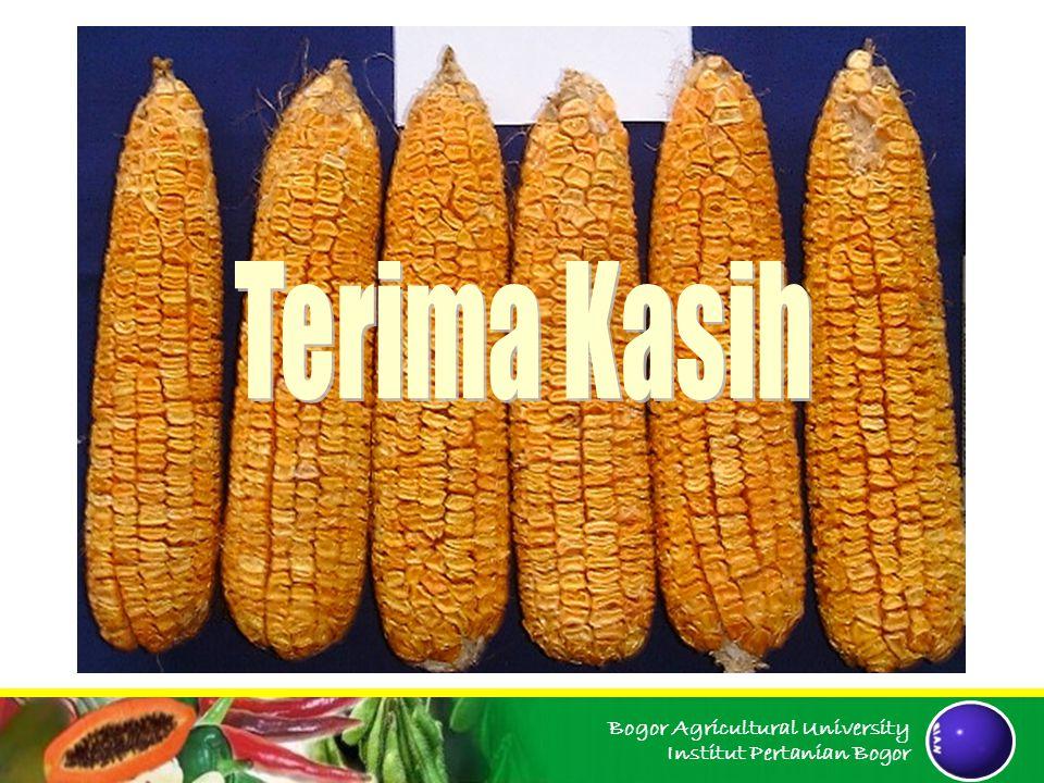Terima Kasih Bogor Agricultural University Institut Pertanian Bogor