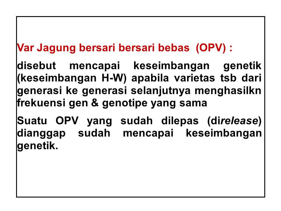 Var Jagung bersari bersari bebas (OPV) :