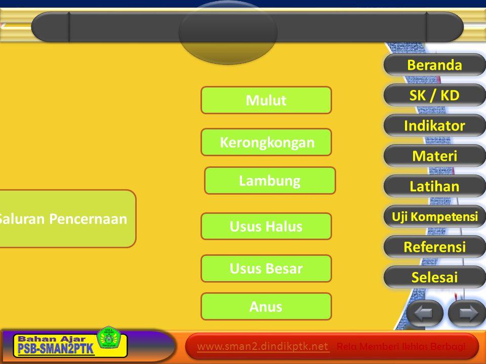 Beranda SK / KD Mulut Indikator Materi Lambung Latihan