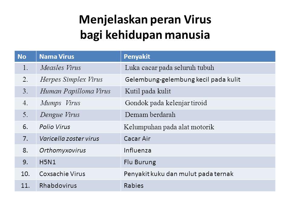 Menjelaskan peran Virus bagi kehidupan manusia