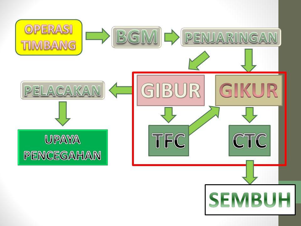 GIBUR GIKUR TFC CTC SEMBUH