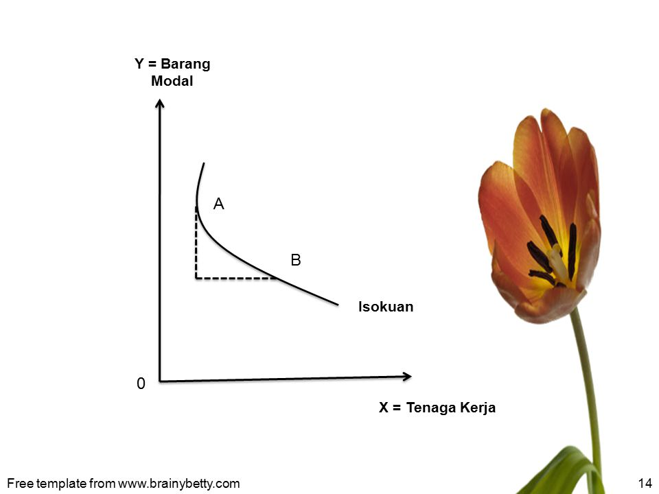 A B Y = Barang Modal Isokuan X = Tenaga Kerja