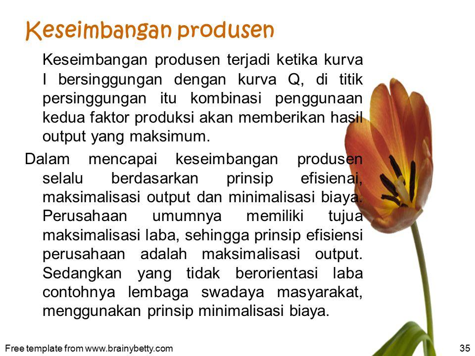 Keseimbangan produsen
