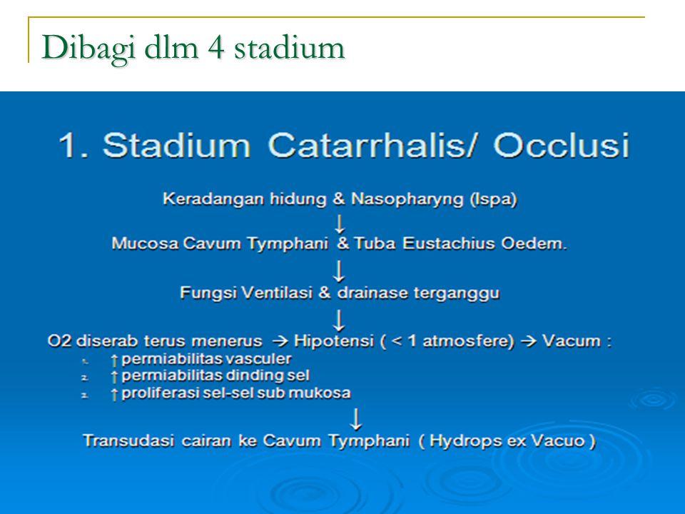 Dibagi dlm 4 stadium